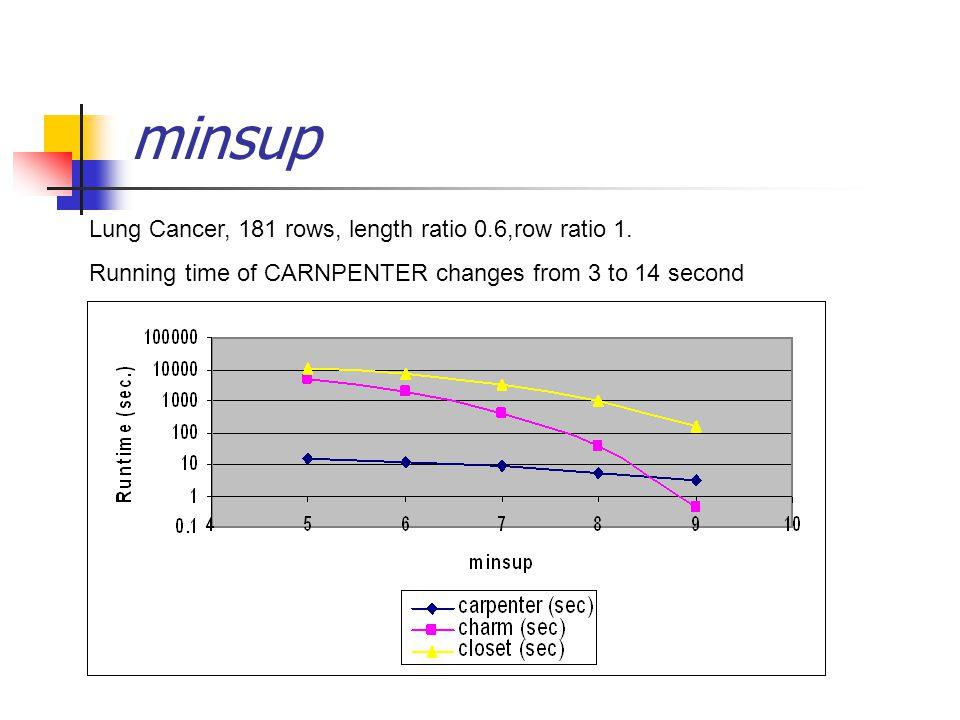 minsup Lung Cancer, 181 rows, length ratio 0.6,row ratio 1.