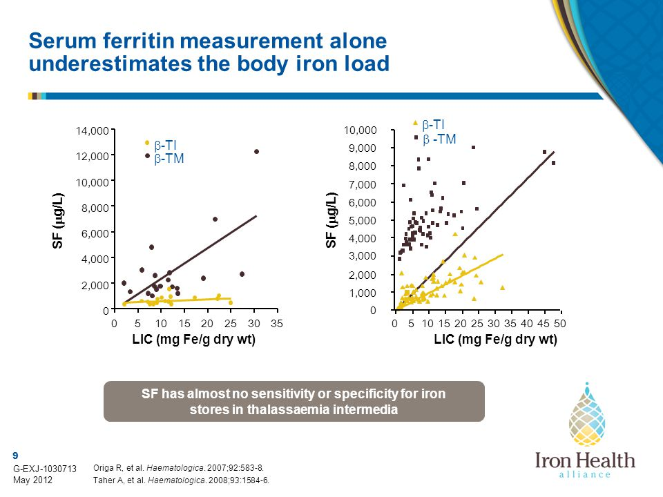Serum ferritin measurement alone underestimates the body iron load