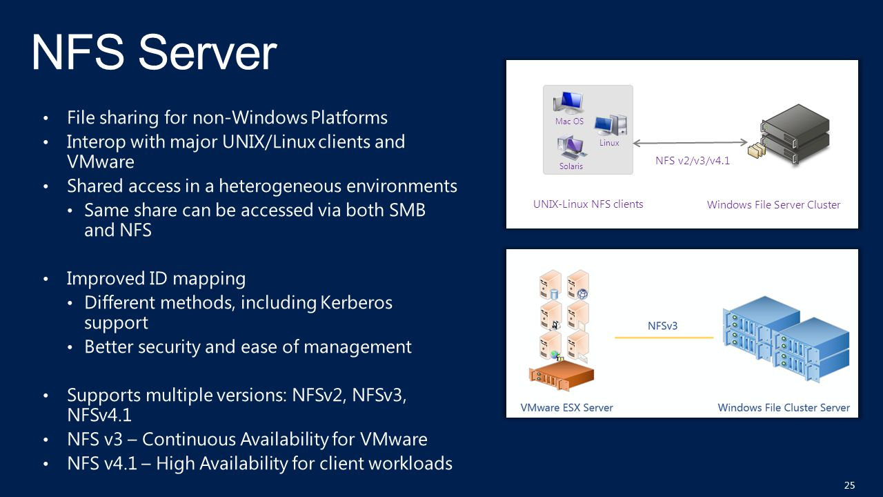 NFS Server File sharing for non-Windows Platforms