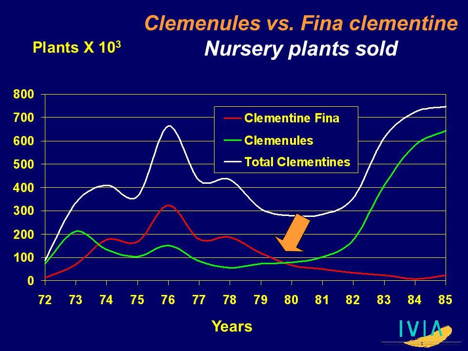 Clemenules vs. Fina clementine