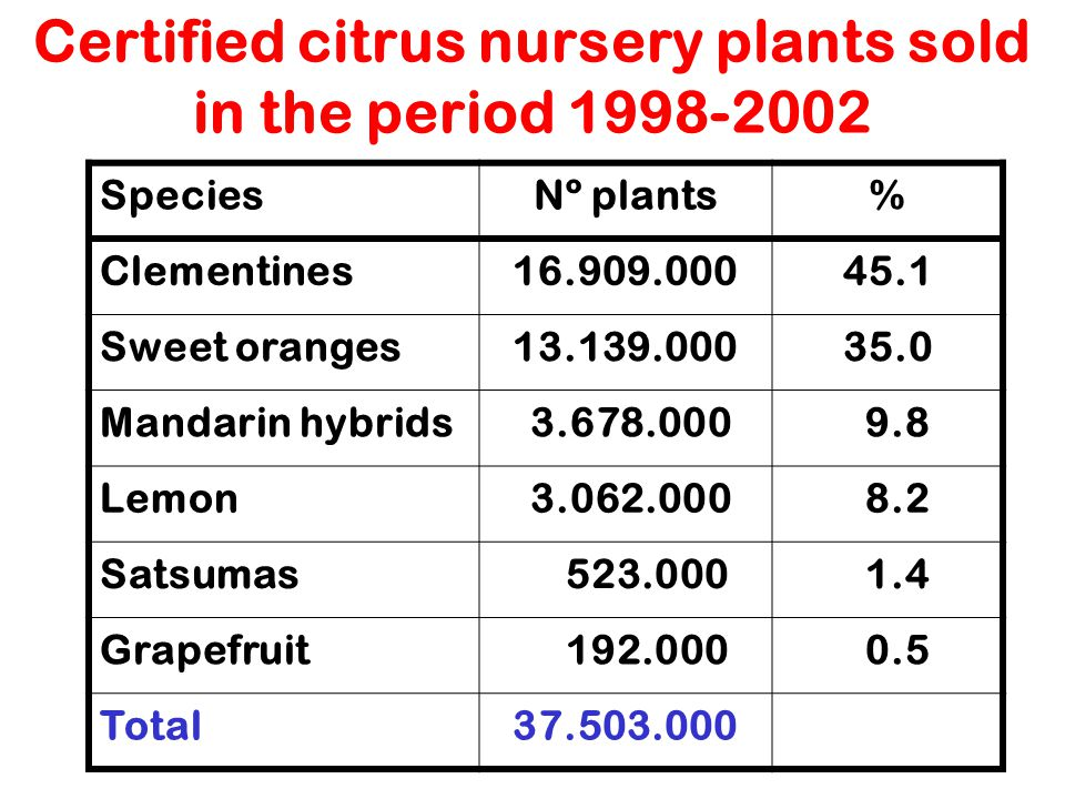 Certified citrus nursery plants sold in the period 1998-2002
