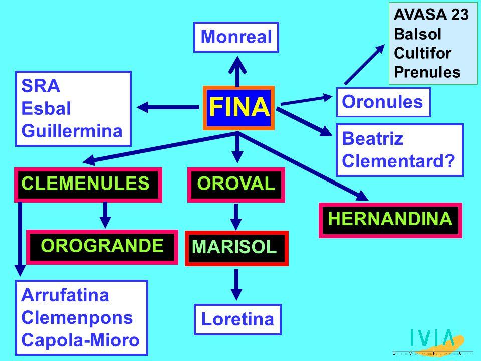 FINA Monreal SRA Esbal Guillermina Oronules Beatriz Clementard