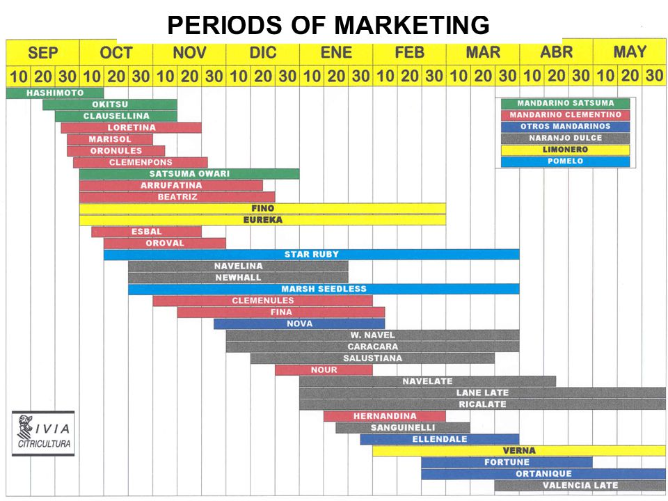 PERIODS OF MARKETING