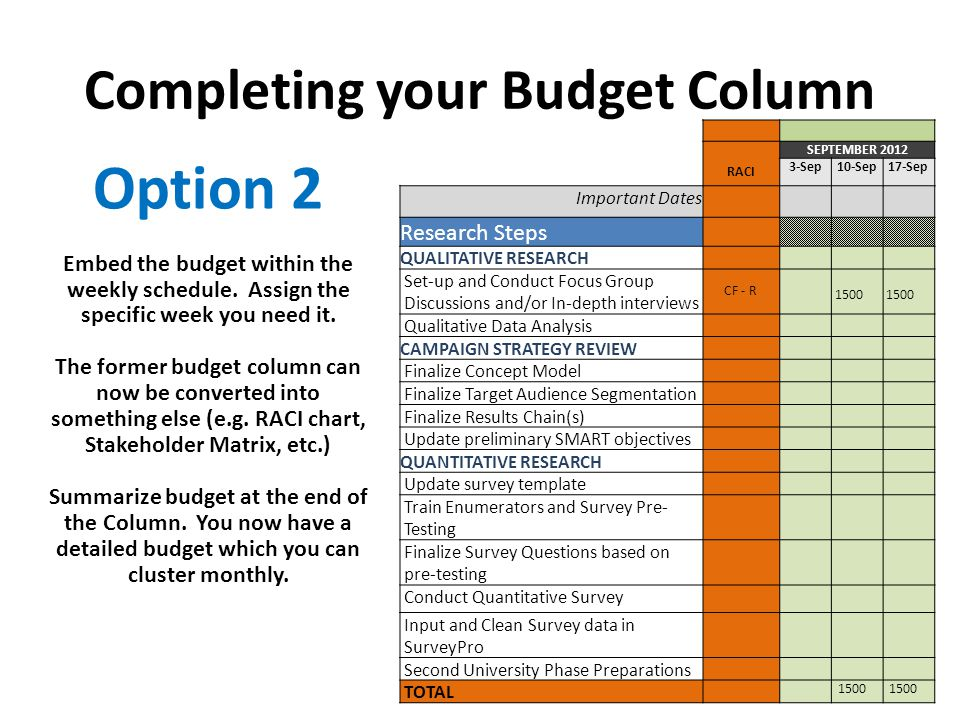 Completing your Budget Column