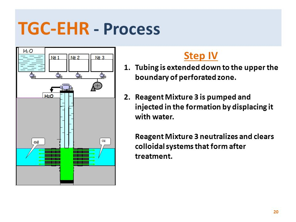 TGC-EHR - Process Step IV