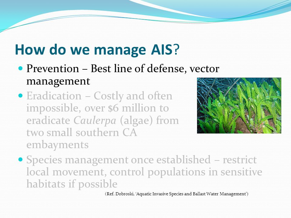 How do we manage AIS Prevention – Best line of defense, vector management.