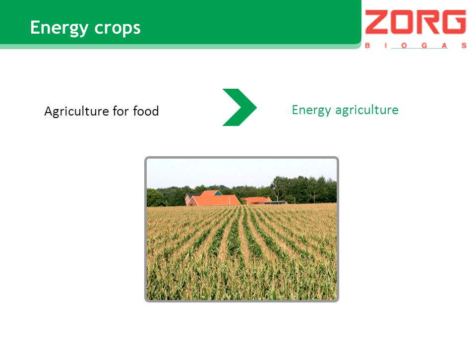 Energy crops Agriculture for food Energy agriculture