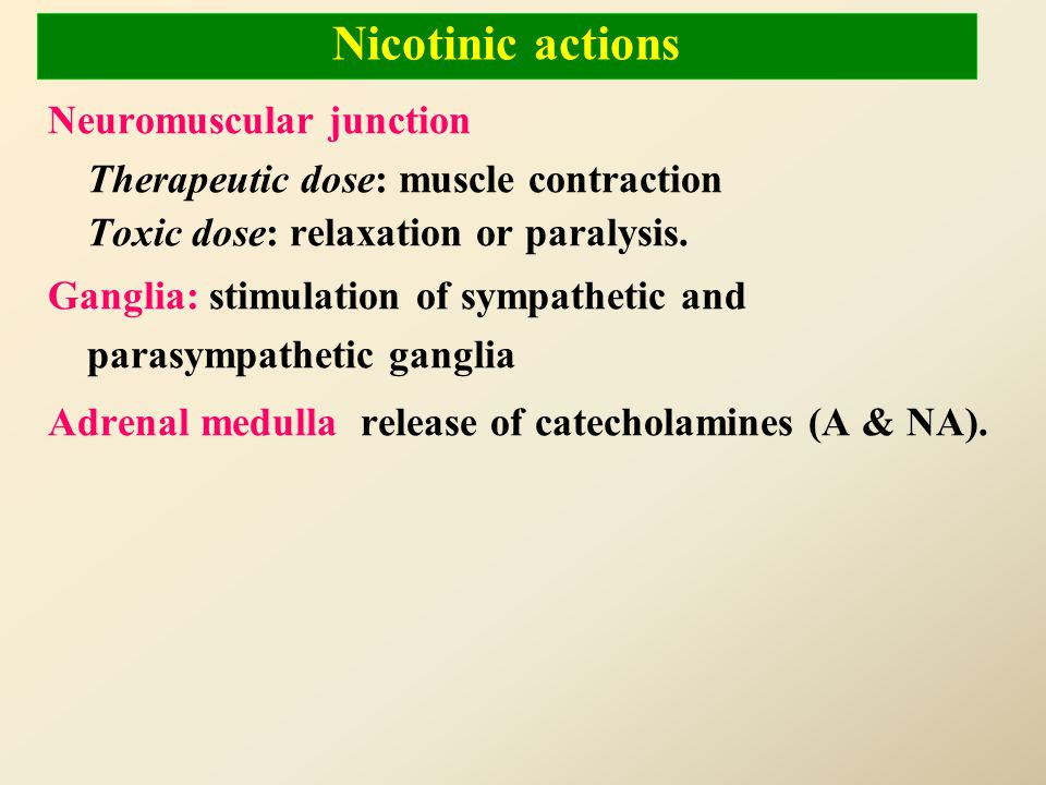 Nicotinic actions Neuromuscular junction