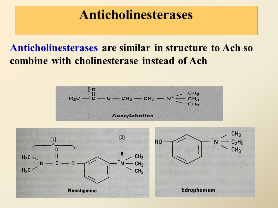 Anticholinesterases Anticholinesterases are similar in structure to Ach so combine with cholinesterase instead of Ach.