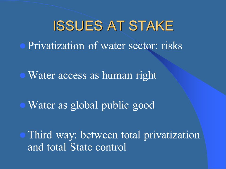 ISSUES AT STAKE Privatization of water sector: risks