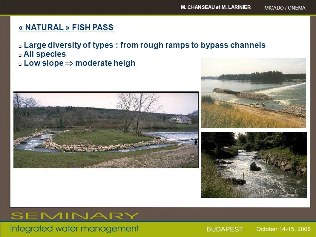 Large diversity of types : from rough ramps to bypass channels