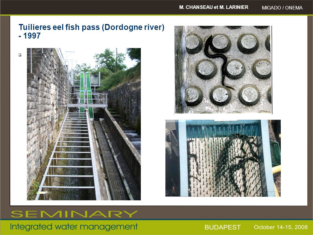 Tuilieres eel fish pass (Dordogne river) - 1997