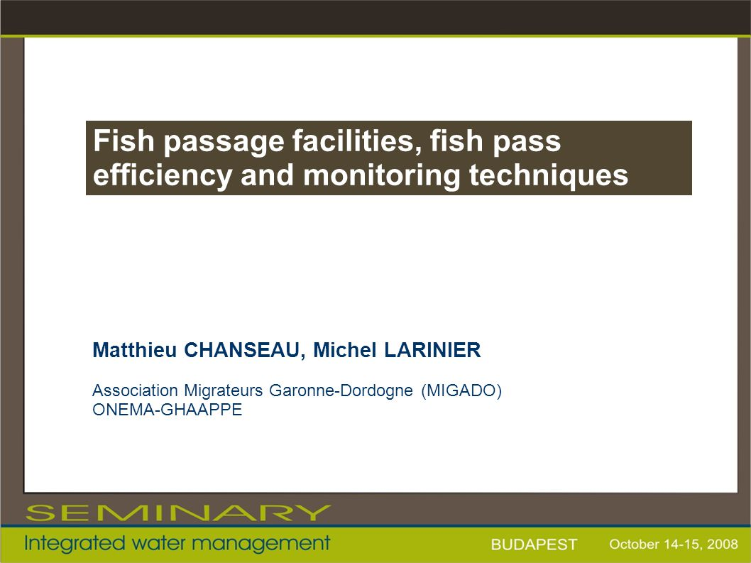 Fish passage facilities, fish pass efficiency and monitoring techniques