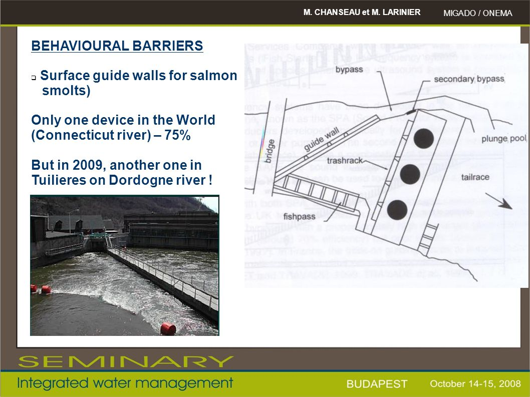 Surface guide walls for salmon smolts) Only one device in the World