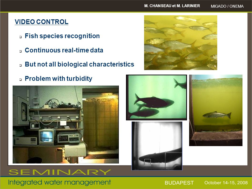 Fish species recognition Continuous real-time data