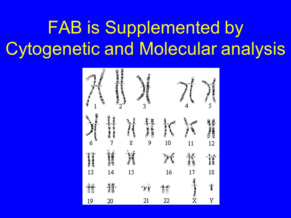 FAB is Supplemented by Cytogenetic and Molecular analysis