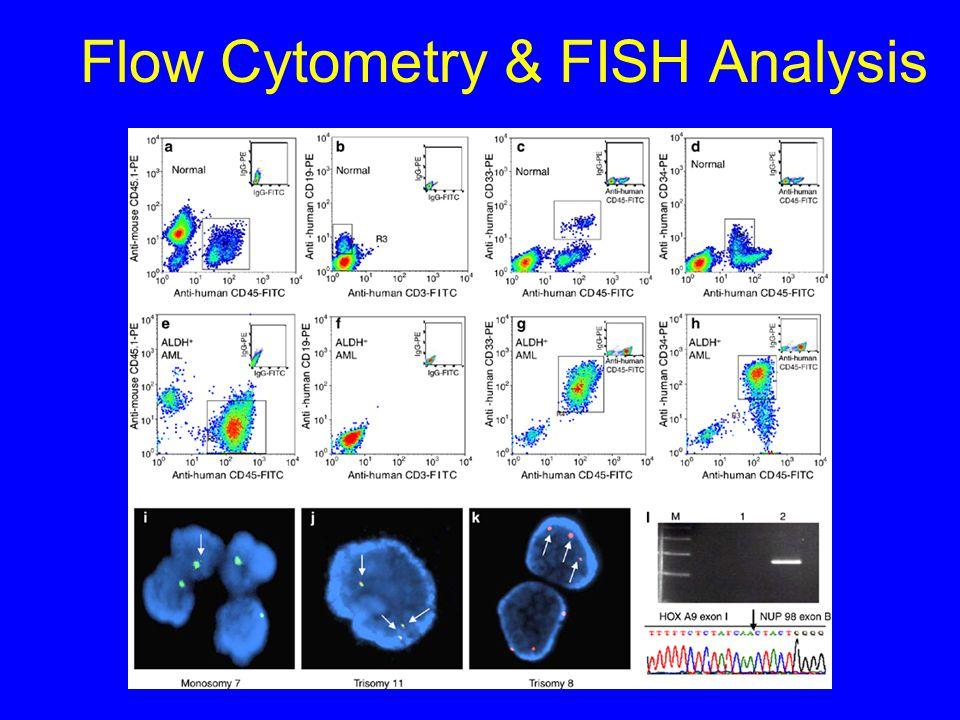 Flow Cytometry & FISH Analysis