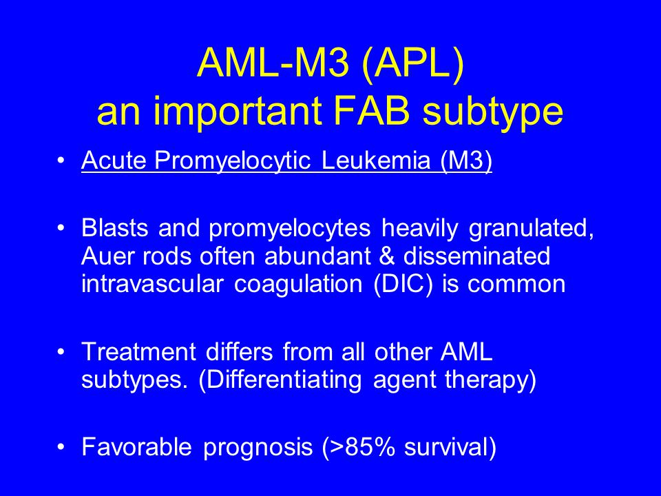 AML-M3 (APL) an important FAB subtype