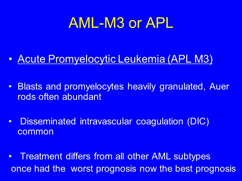 AML-M3 or APL Acute Promyelocytic Leukemia (APL M3)