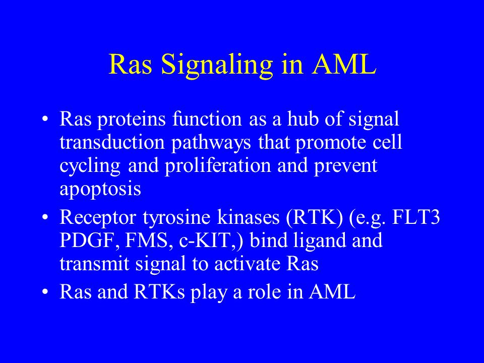 Ras Signaling in AML Ras proteins function as a hub of signal transduction pathways that promote cell cycling and proliferation and prevent apoptosis.