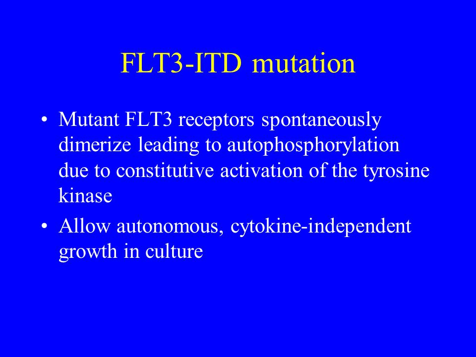 FLT3-ITD mutation Mutant FLT3 receptors spontaneously dimerize leading to autophosphorylation due to constitutive activation of the tyrosine kinase.