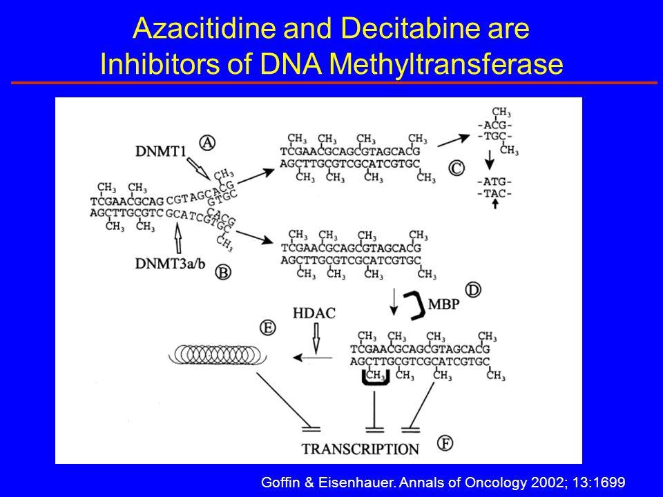 Azacitidine and Decitabine are Inhibitors of DNA Methyltransferase