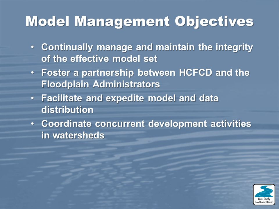 Model Management Objectives
