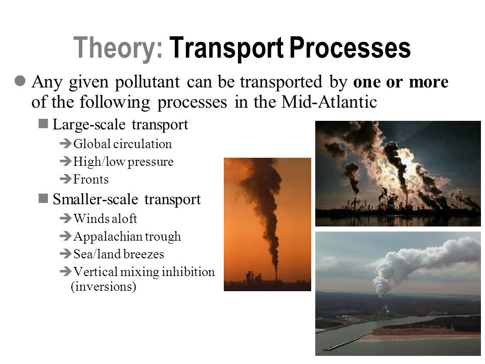 Theory: Transport Processes
