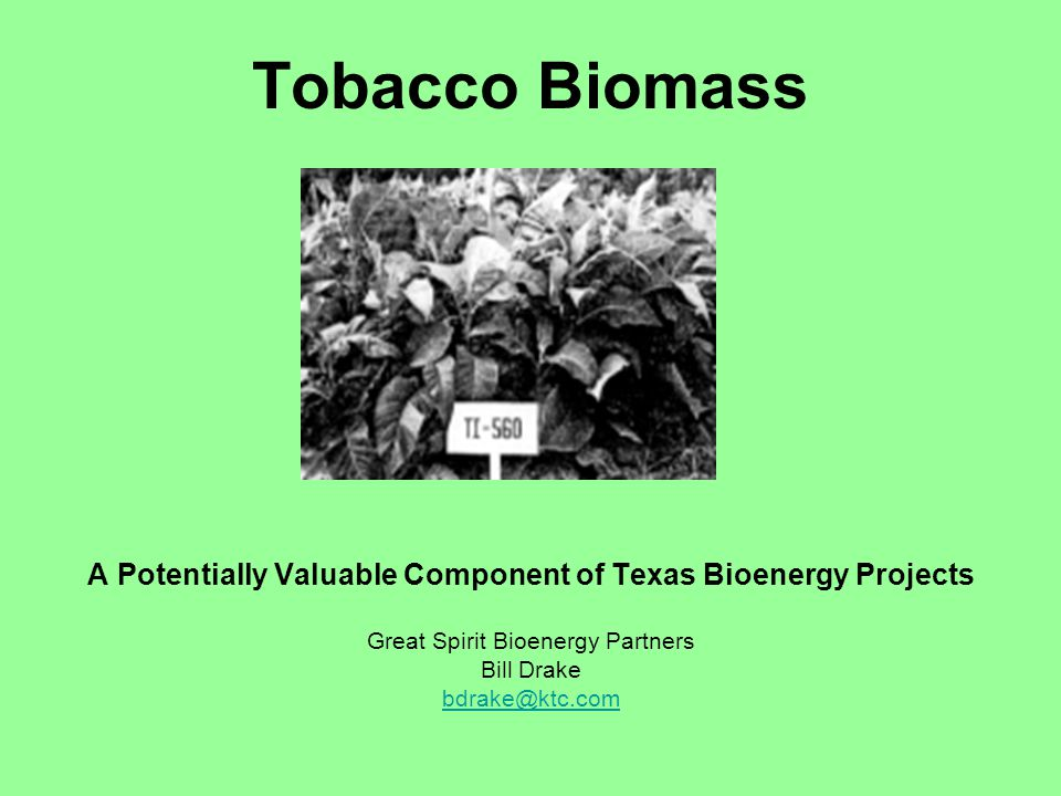 A Potentially Valuable Component of Texas Bioenergy Projects