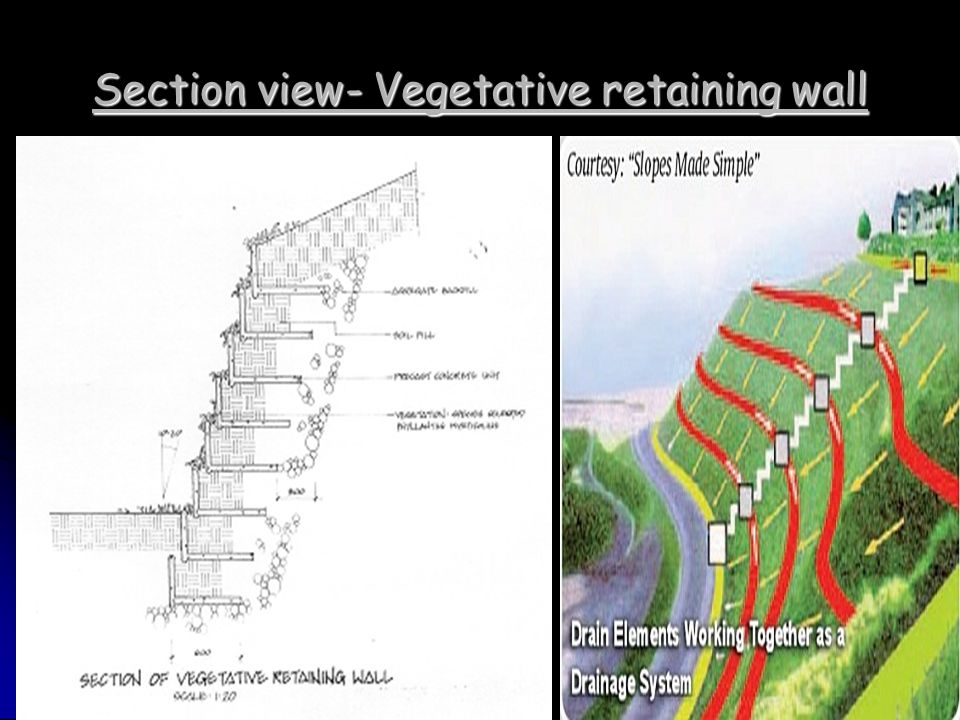 Section view- Vegetative retaining wall