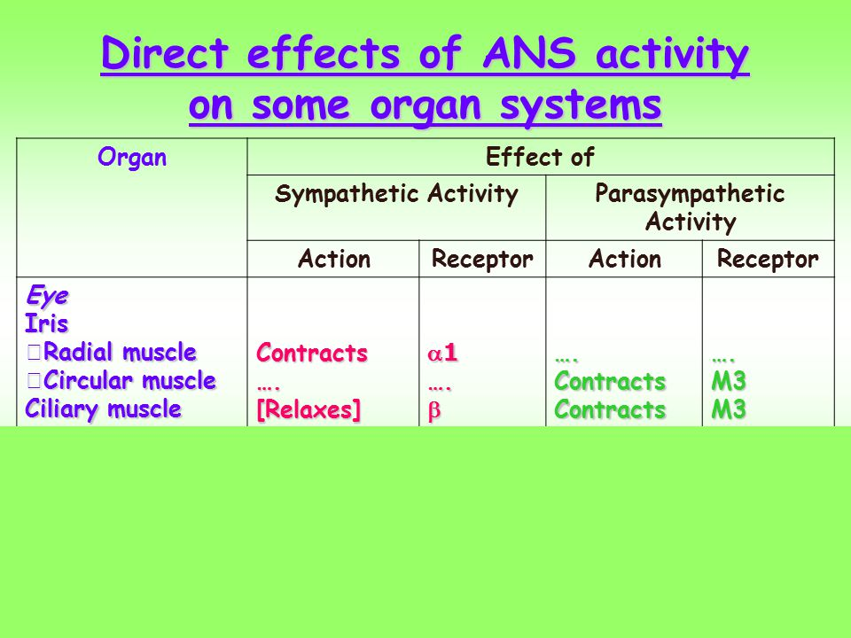 Direct effects of ANS activity on some organ systems
