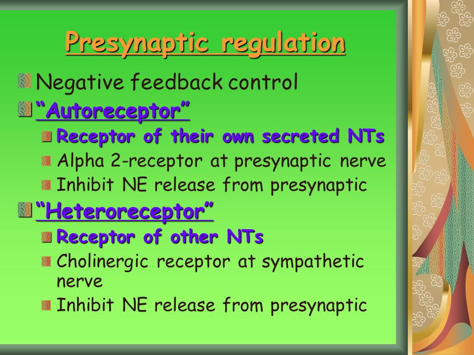 Presynaptic regulation
