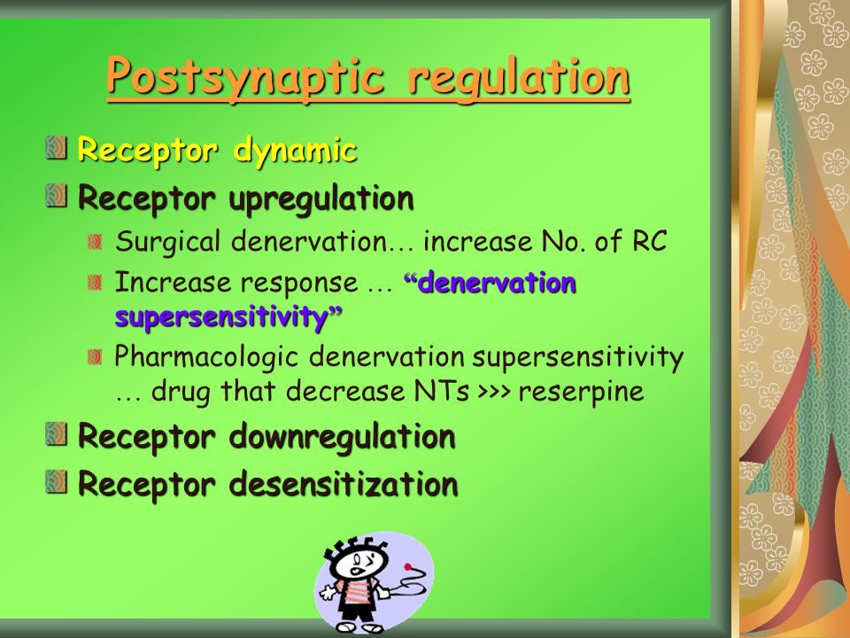 Postsynaptic regulation