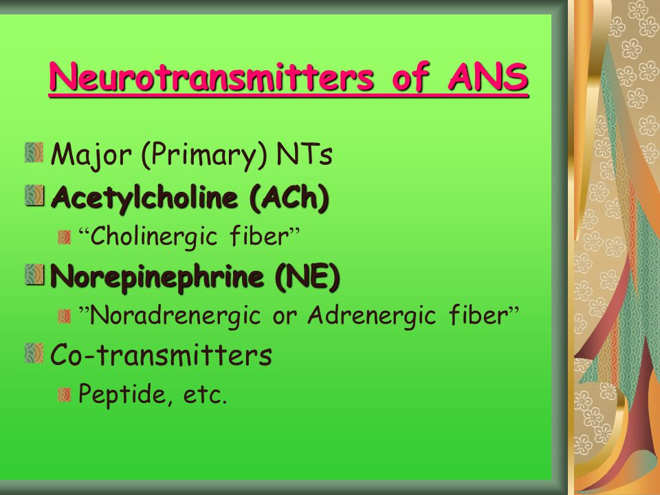 Neurotransmitters of ANS