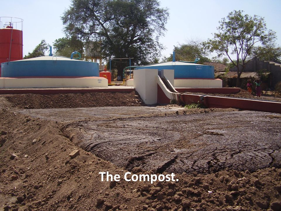 The Compost.