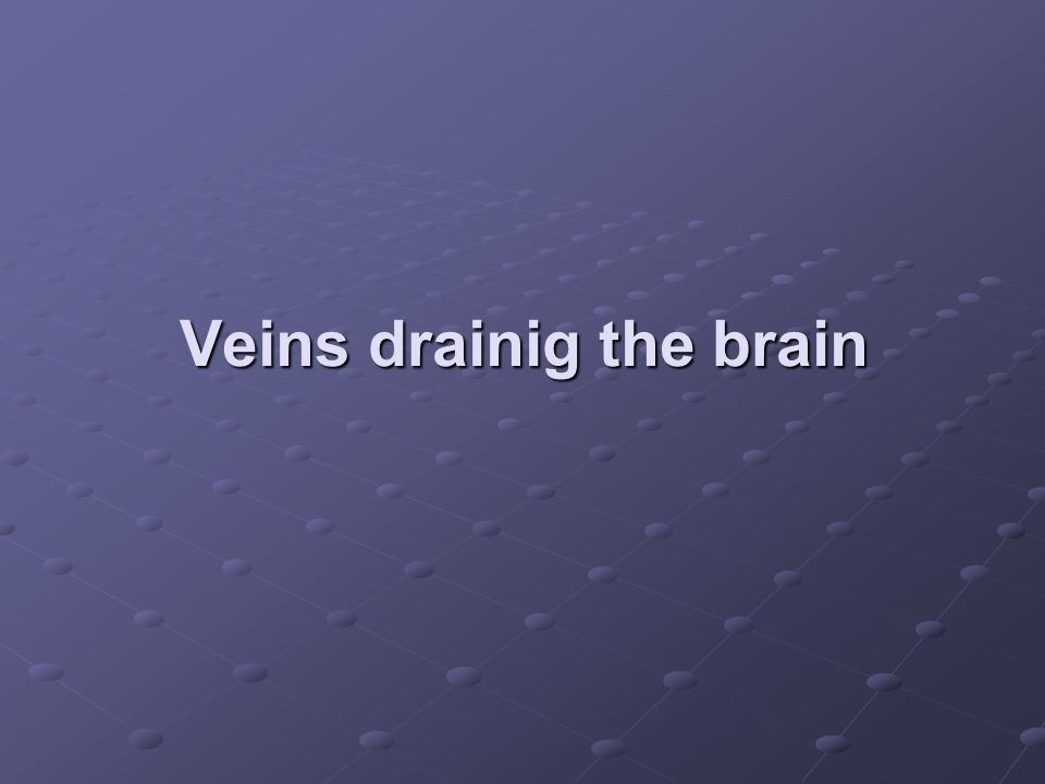 Veins drainig the brain
