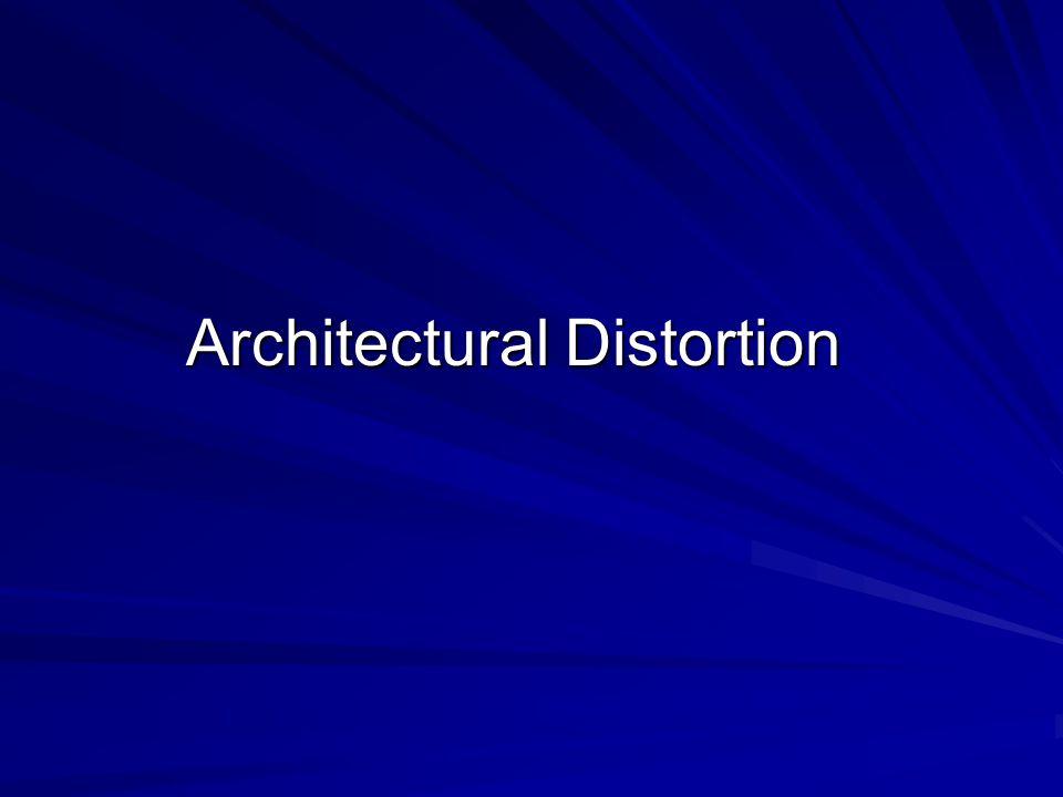 Architectural Distortion