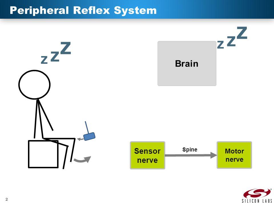 Peripheral Reflex System