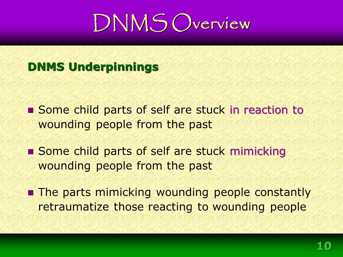 Module 3 – DNMS Resource Development Protocol 10