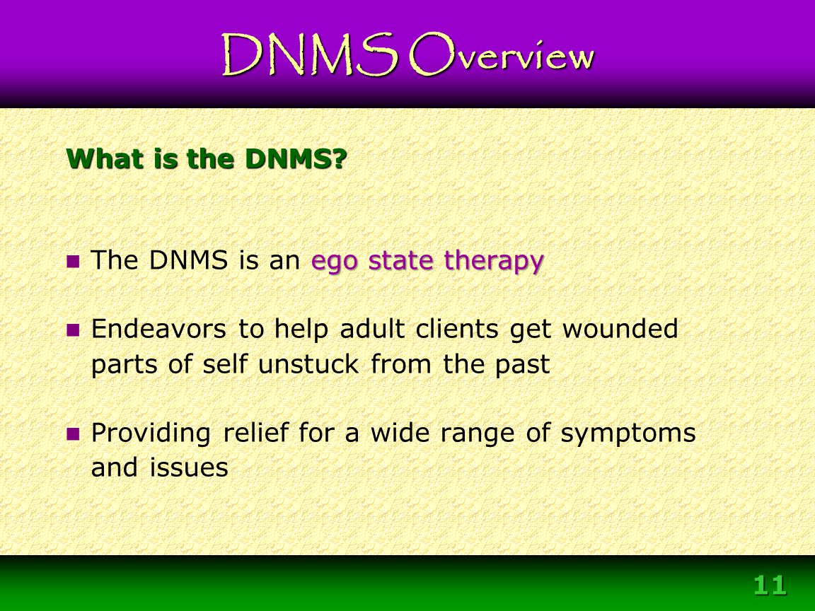 DNMS Overview What is the DNMS The DNMS is an ego state therapy