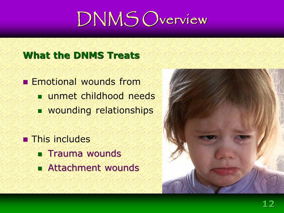 Module 3 – DNMS Resource Development Protocol 12