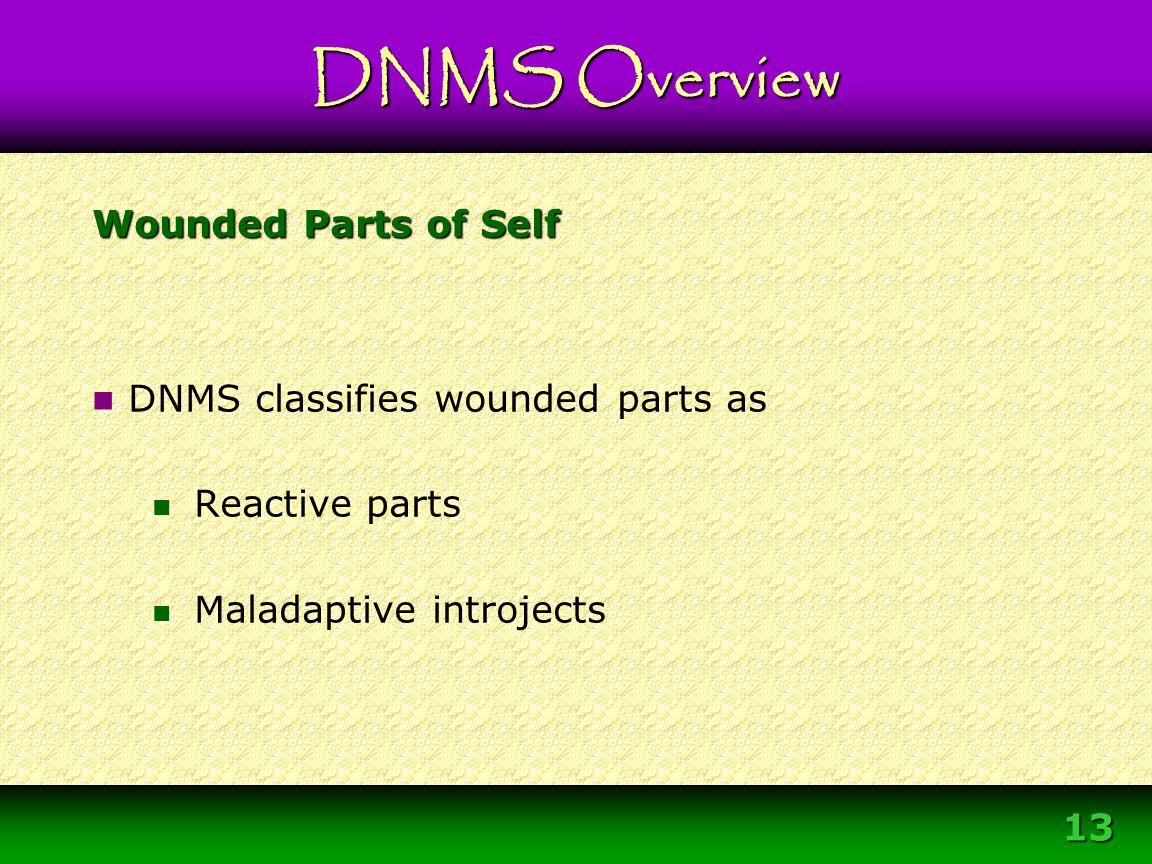 Module 3 – DNMS Resource Development Protocol 13