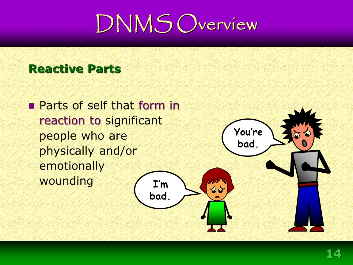 Module 3 – DNMS Resource Development Protocol 14