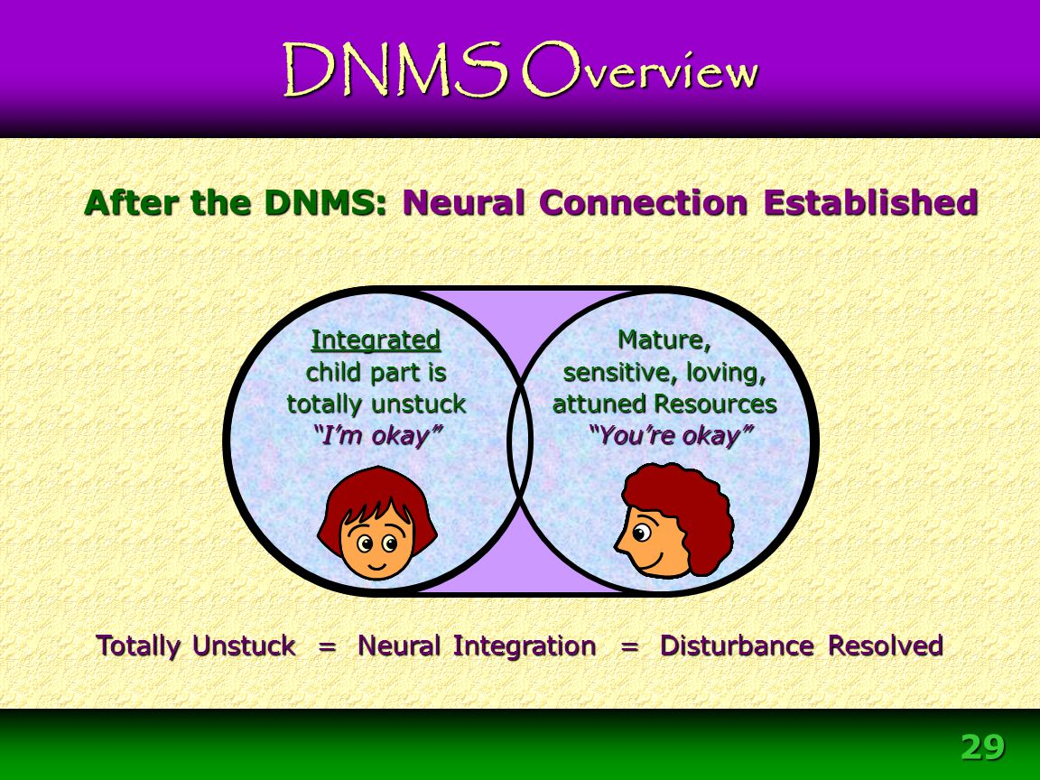After the DNMS: Neural Connection Established