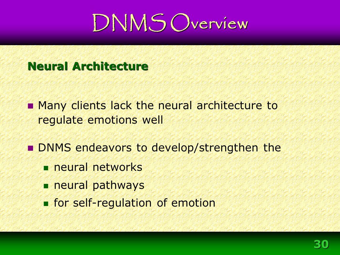 Module 3 – DNMS Resource Development Protocol 30