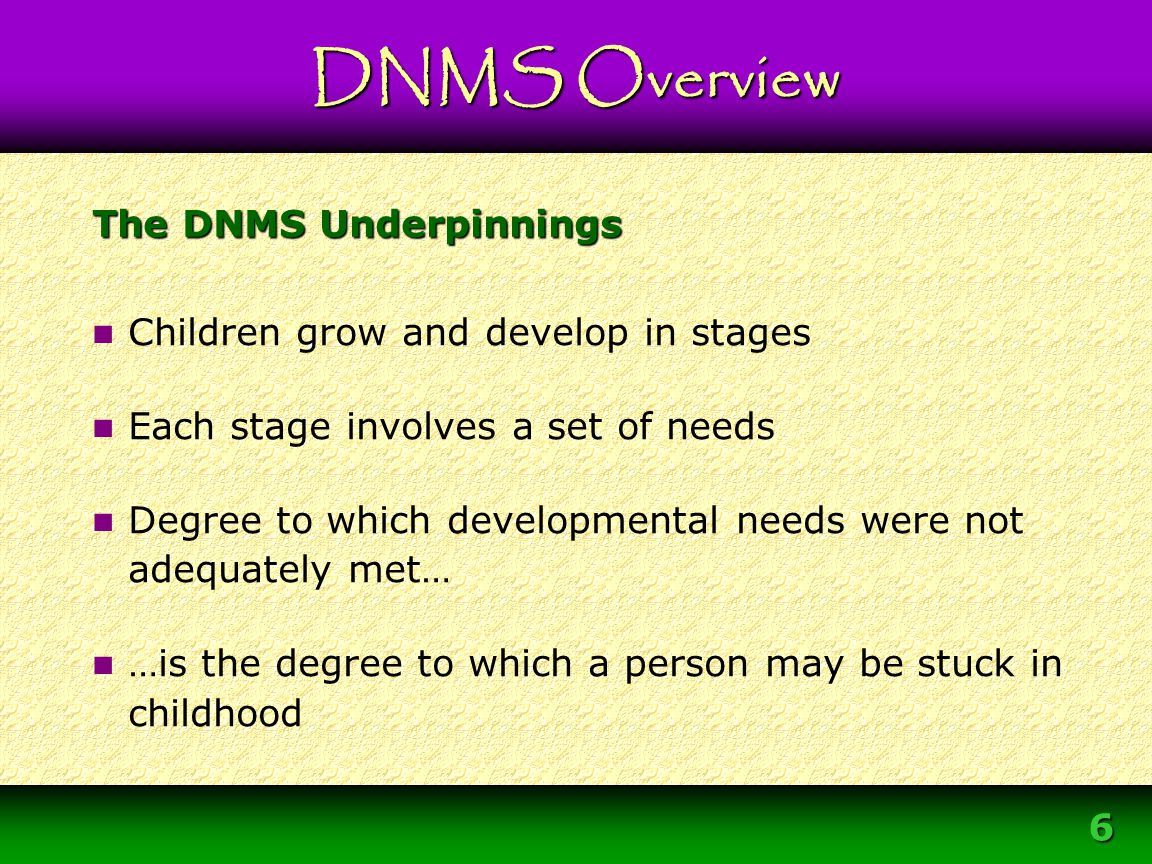 The DNMS Underpinnings