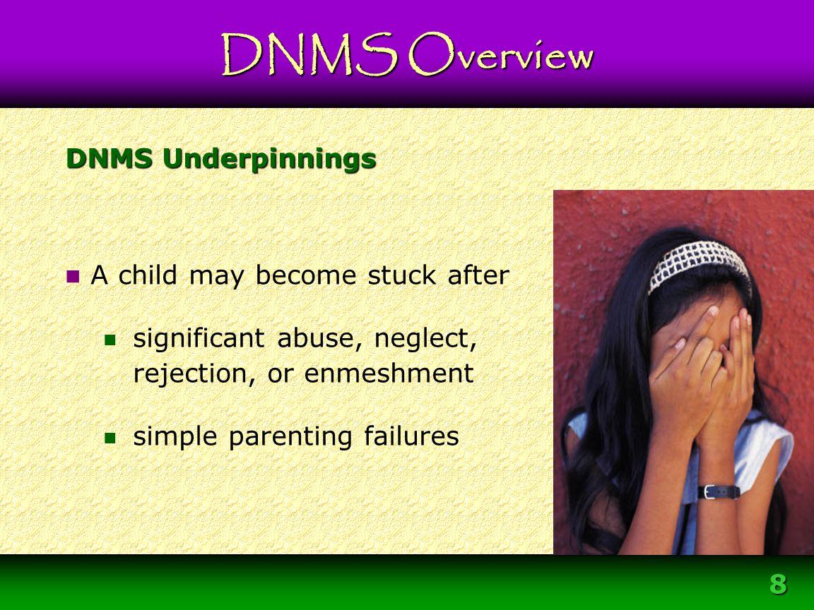 Module 3 – DNMS Resource Development Protocol 8
