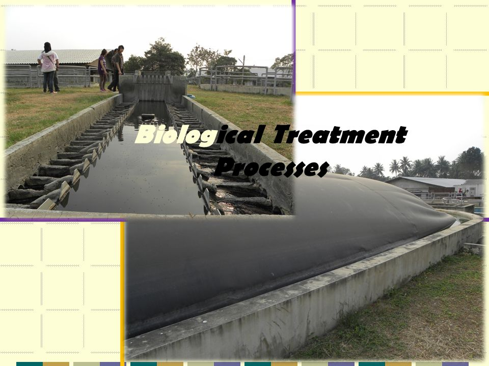 Biological Treatment Processes