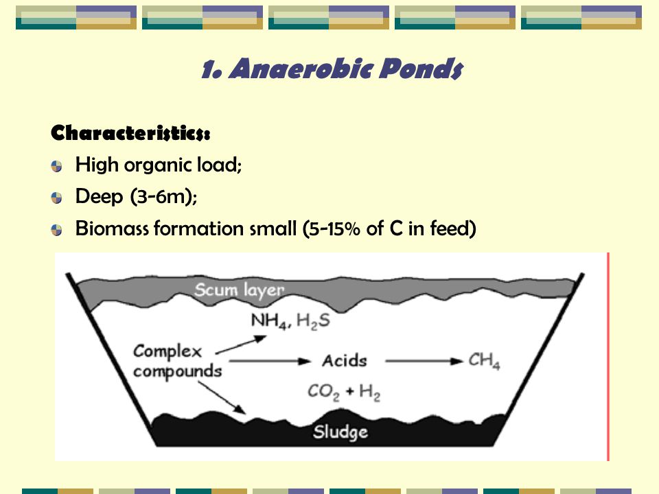 anaerobic pond in wastewater treatment Anaerobic digestion is the most commonly used method of wastewater sludge treatment, where the primary aim is to break down the sludge in.