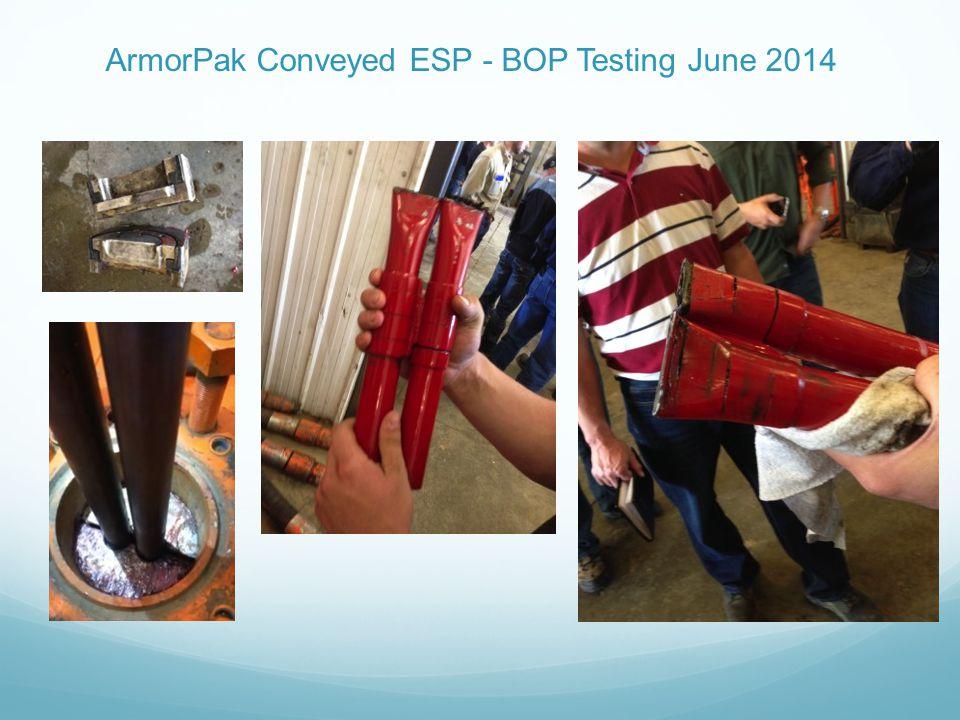 ArmorPak Conveyed ESP - BOP Testing June 2014